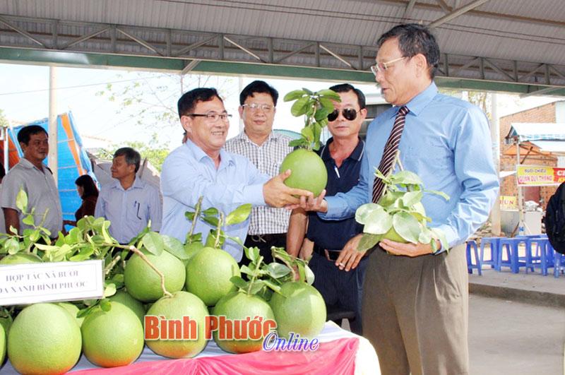 Hội nghị giao thương giữa doanh nghiệp Bình Phước và An Giang
